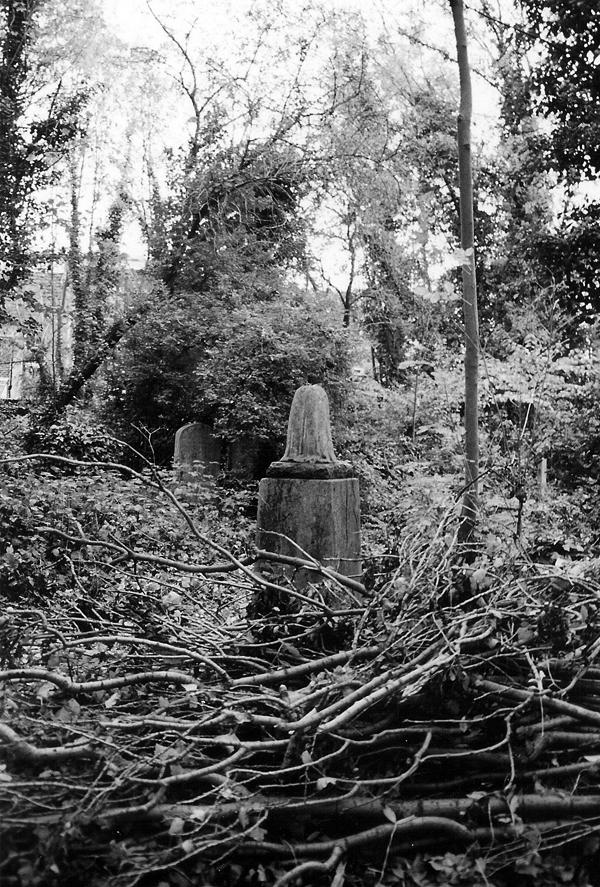 cemetery7